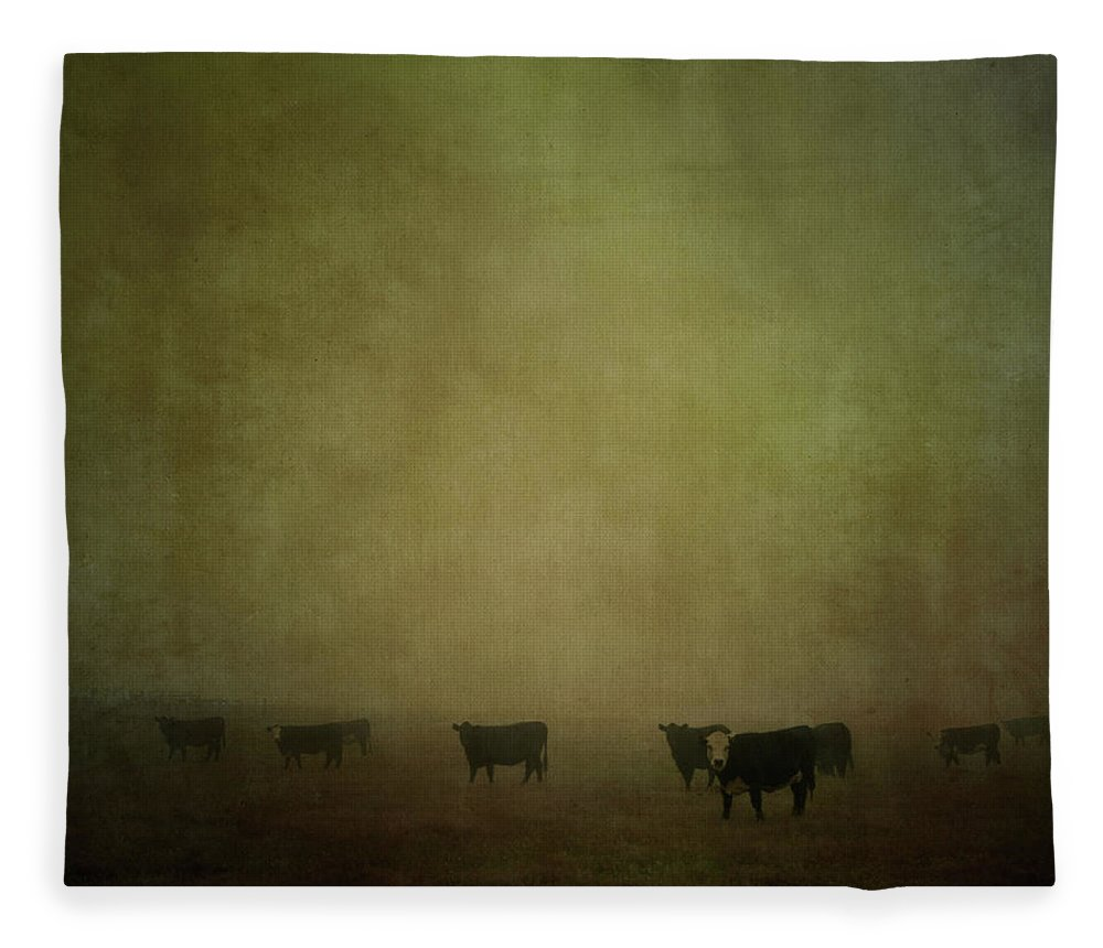 Pets Fleece Blanket featuring the photograph Cattle In The Mist by Jill Ferry