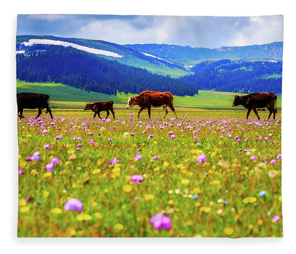 Tranquility Fleece Blanket featuring the photograph Cattle Walking In Grassland by Feng Wei Photography