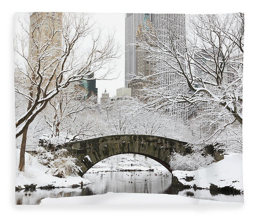 Snow Fleece Blanket featuring the photograph Central Park, New York by Veni