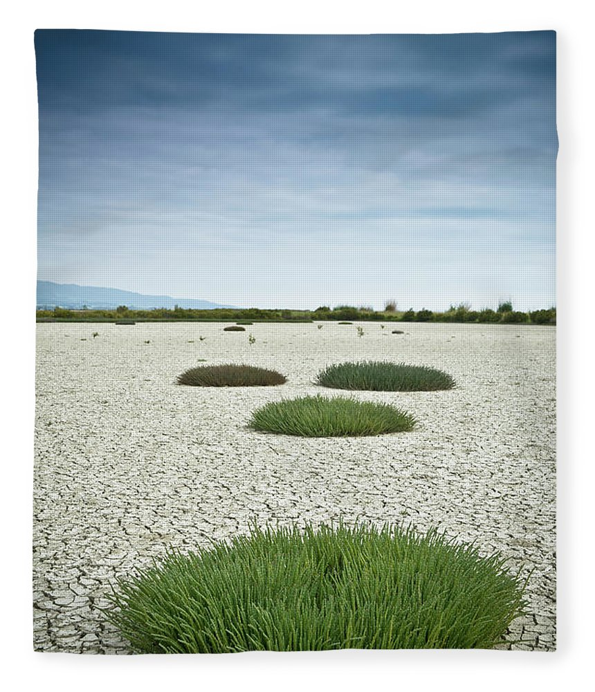 Grass Fleece Blanket featuring the photograph Clumps Of Grass Growing Through Cracked by David Duchemin / Design Pics