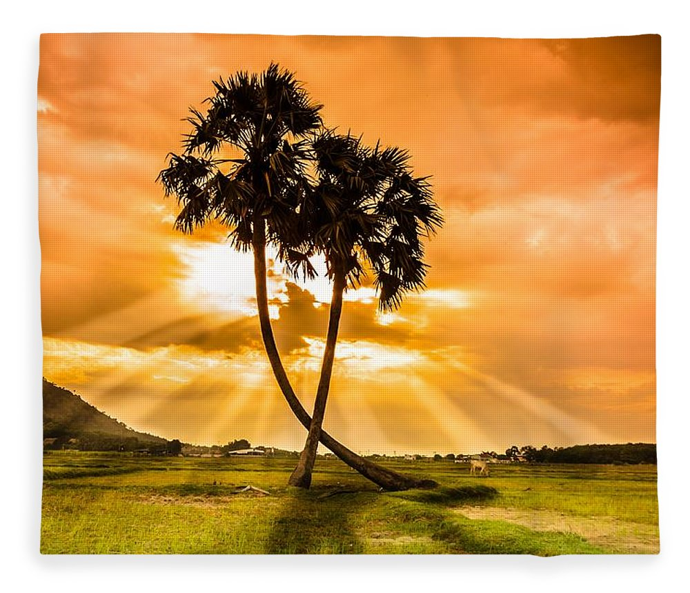 Love Fleece Blanket featuring the photograph Couple by Lam Loi