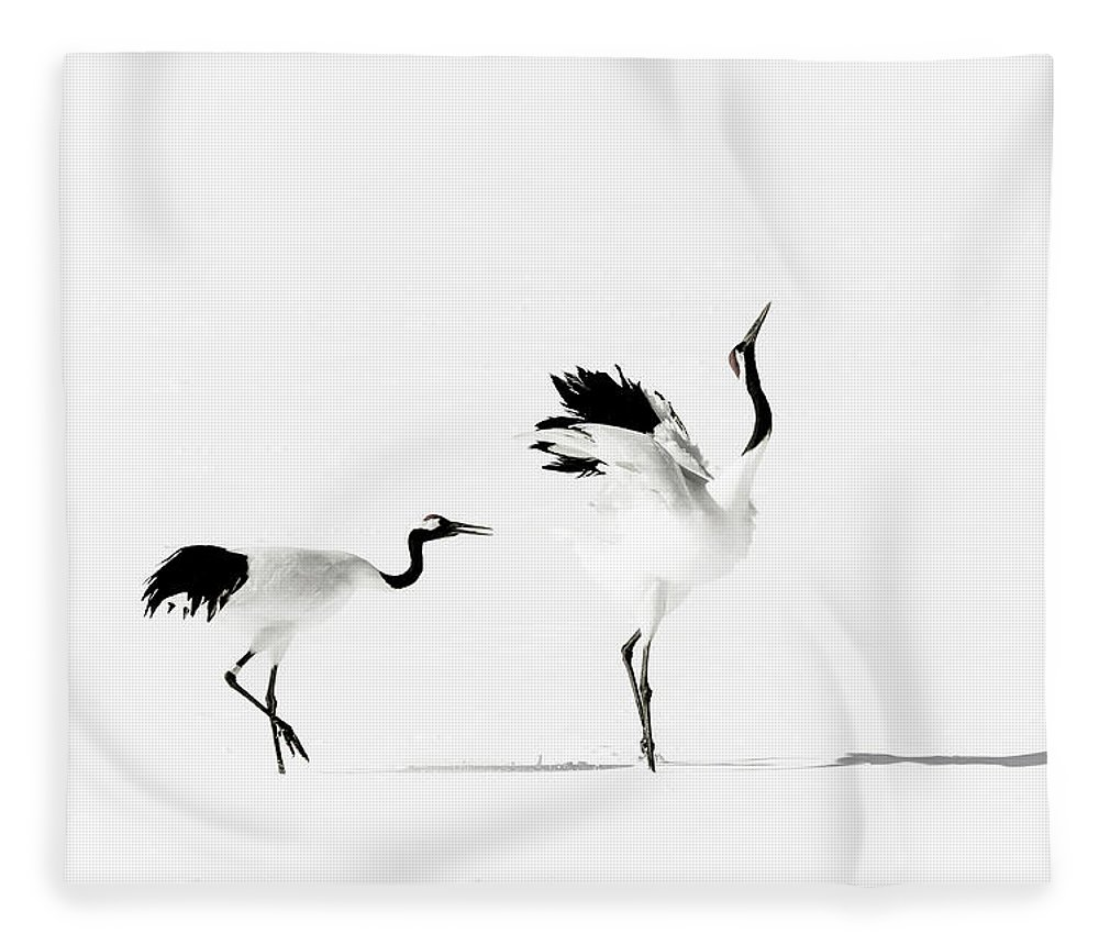 Hokkaido Fleece Blanket featuring the photograph Crane by Makieni's Photo