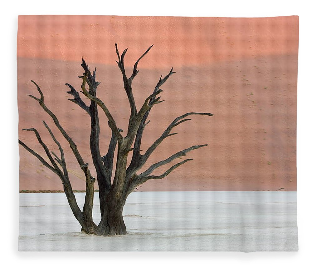 Scenics Fleece Blanket featuring the photograph Dead Vlei Sossusvlei Africa Namibia by Thorsten Milse / Robertharding