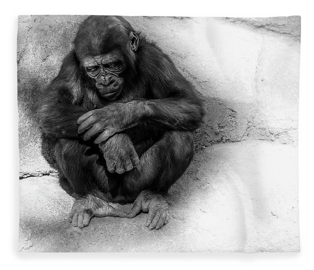 Gorilla Fleece Blanket featuring the photograph Deep Thought by Larry Marshall