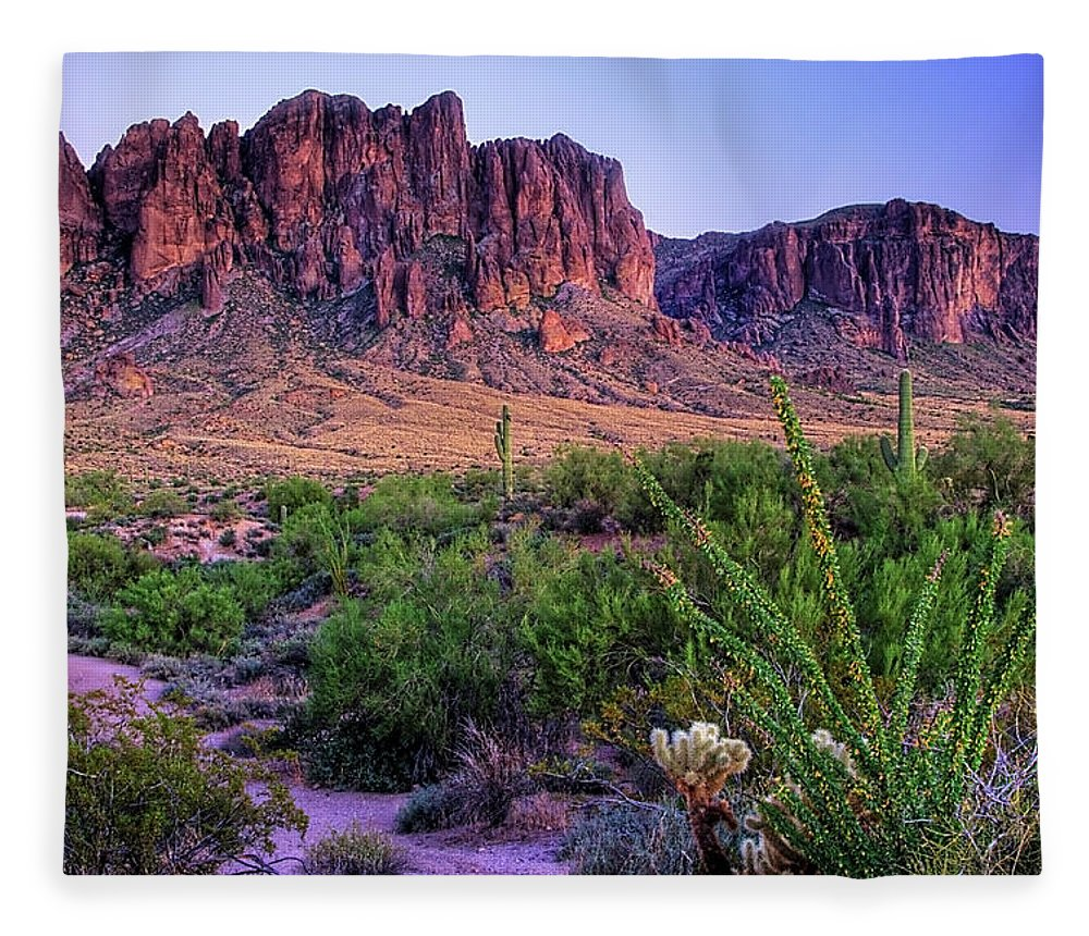 Tranquility Fleece Blanket featuring the photograph Desert Trail by Patti Sullivan Schmidt
