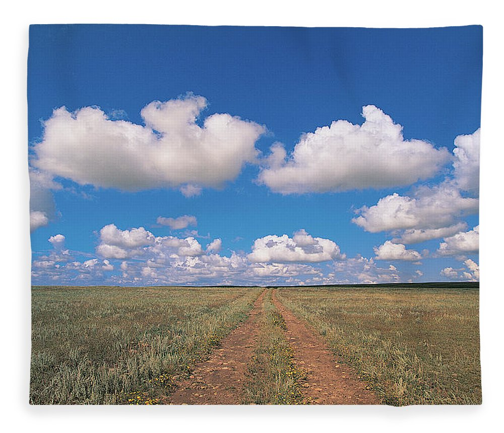 Grainy Fleece Blanket featuring the photograph Dirt Road On Prairie With Cumulus Sky by Mimotito