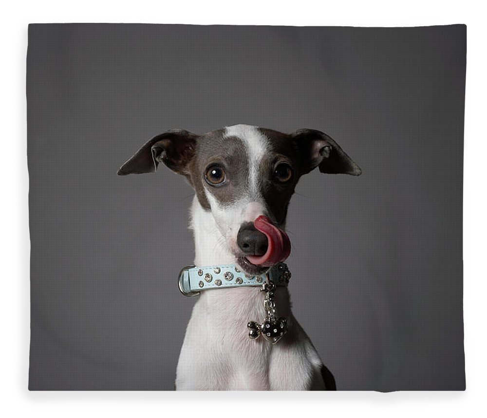 Pets Fleece Blanket featuring the photograph Dog Licking His Nose by Chris Amaral