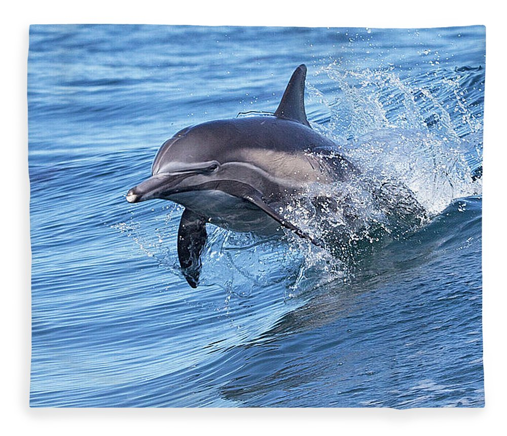 Wake Fleece Blanket featuring the photograph Dolphin Riding Wake by Greg Boreham (treklightly)