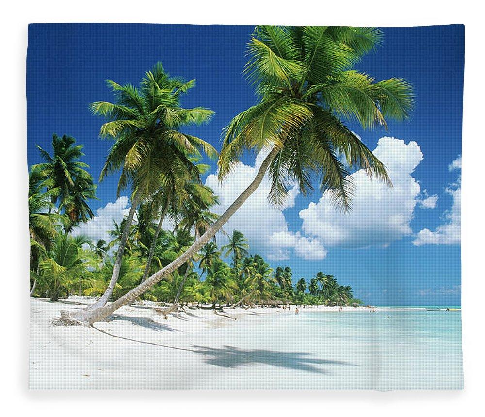Scenics Fleece Blanket featuring the photograph Dominican Republic, Saona Island, Palm by Stefano Stefani