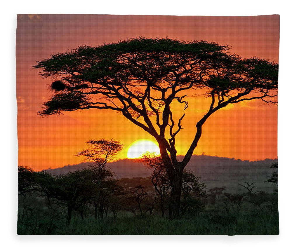 Scenics Fleece Blanket featuring the photograph End Of A Safari-day In The Serengeti by Guenterguni