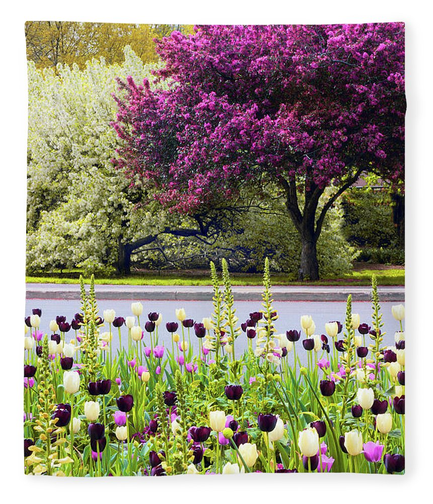Tulips Fleece Blanket featuring the photograph Ensconsed In Spring by Jessica Jenney