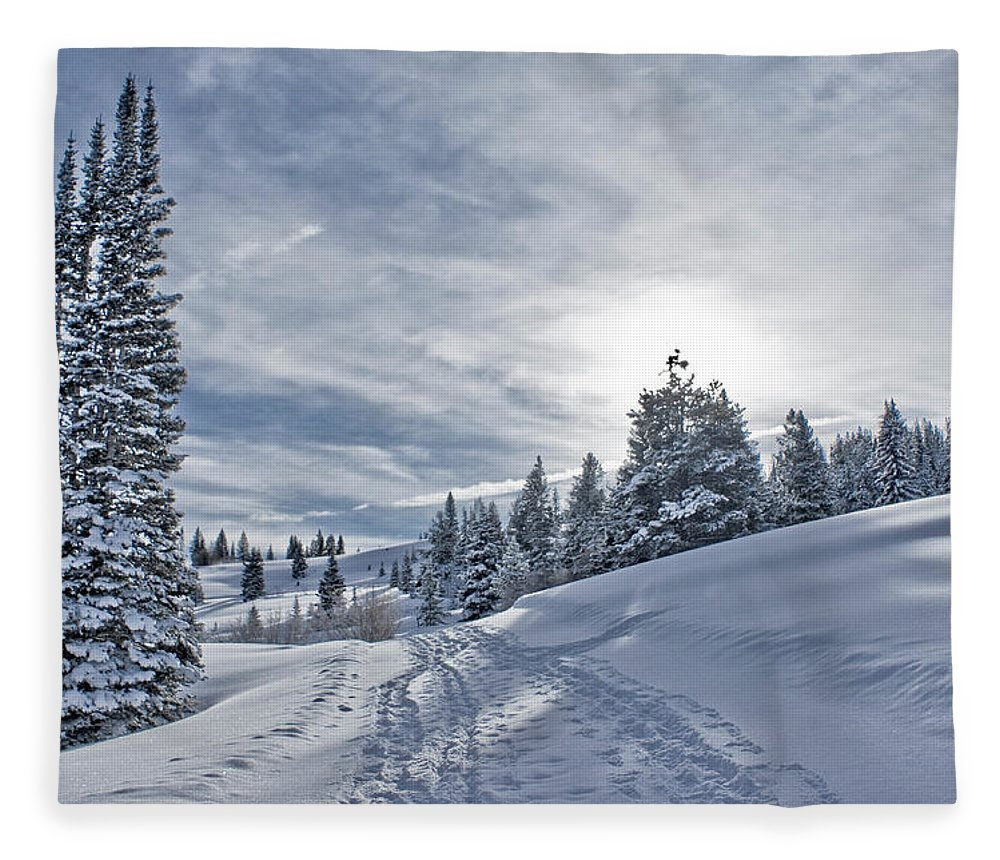 Shadow Fleece Blanket featuring the photograph Escape From Beaver Creek by Rauch Jonathan Photographies