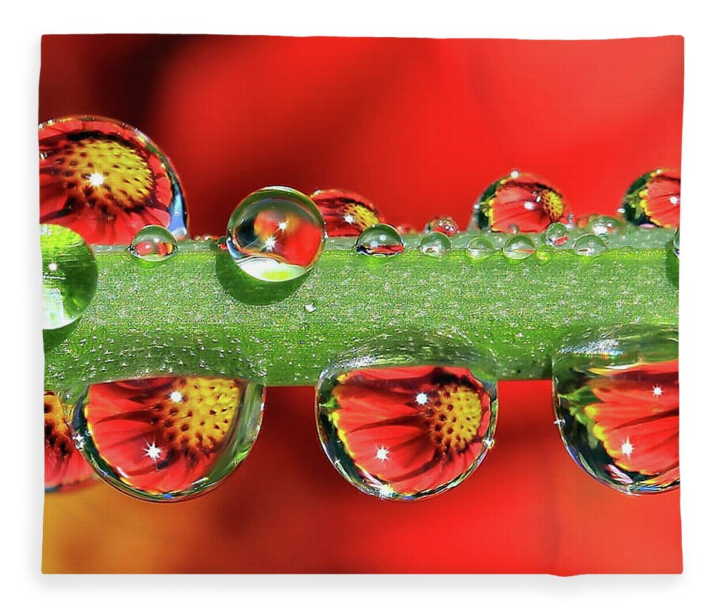 Water Drops Fleece Blanket featuring the photograph Firey Drops by Gary Yost