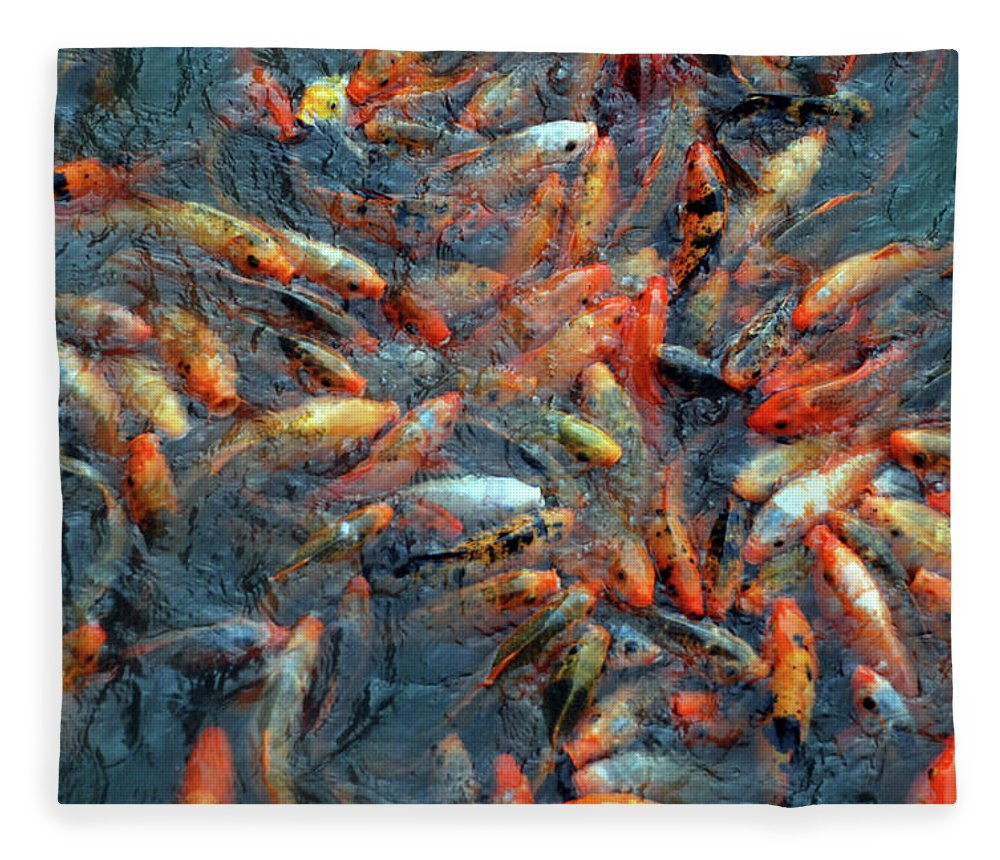 Underwater Fleece Blanket featuring the photograph Fish Fight by Thomas Carroll