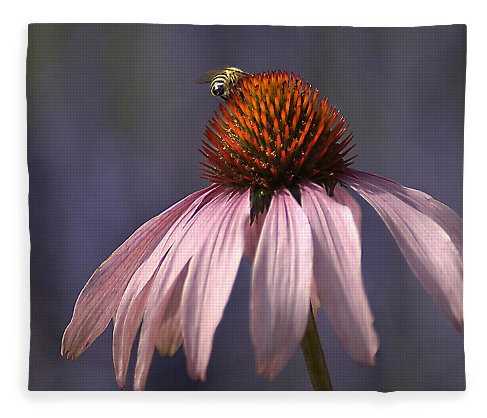 Insect Fleece Blanket featuring the photograph Flower And Bee by Bob Van Den Berg Photography