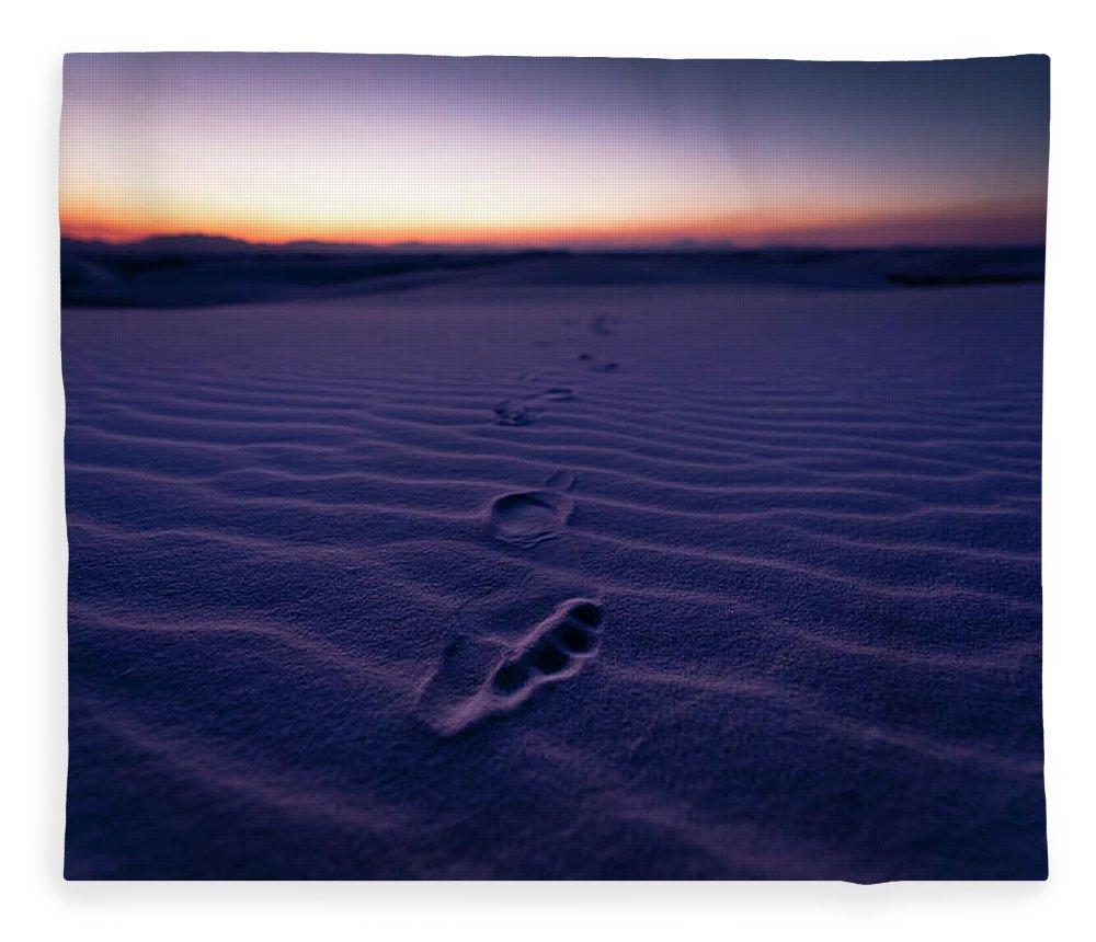 New Mexico Fleece Blanket featuring the photograph Footprint On Dunes by Son Gallery - Wilson Lee