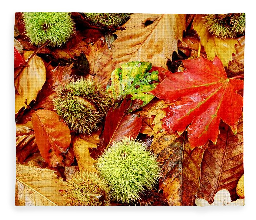 Tranquility Fleece Blanket featuring the photograph Forest Floor by Andrew Turner
