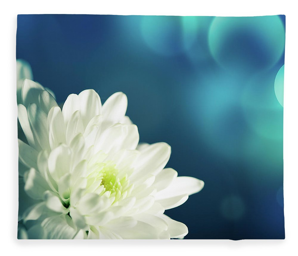 Easter Fleece Blanket featuring the photograph Gerbera by Jeja