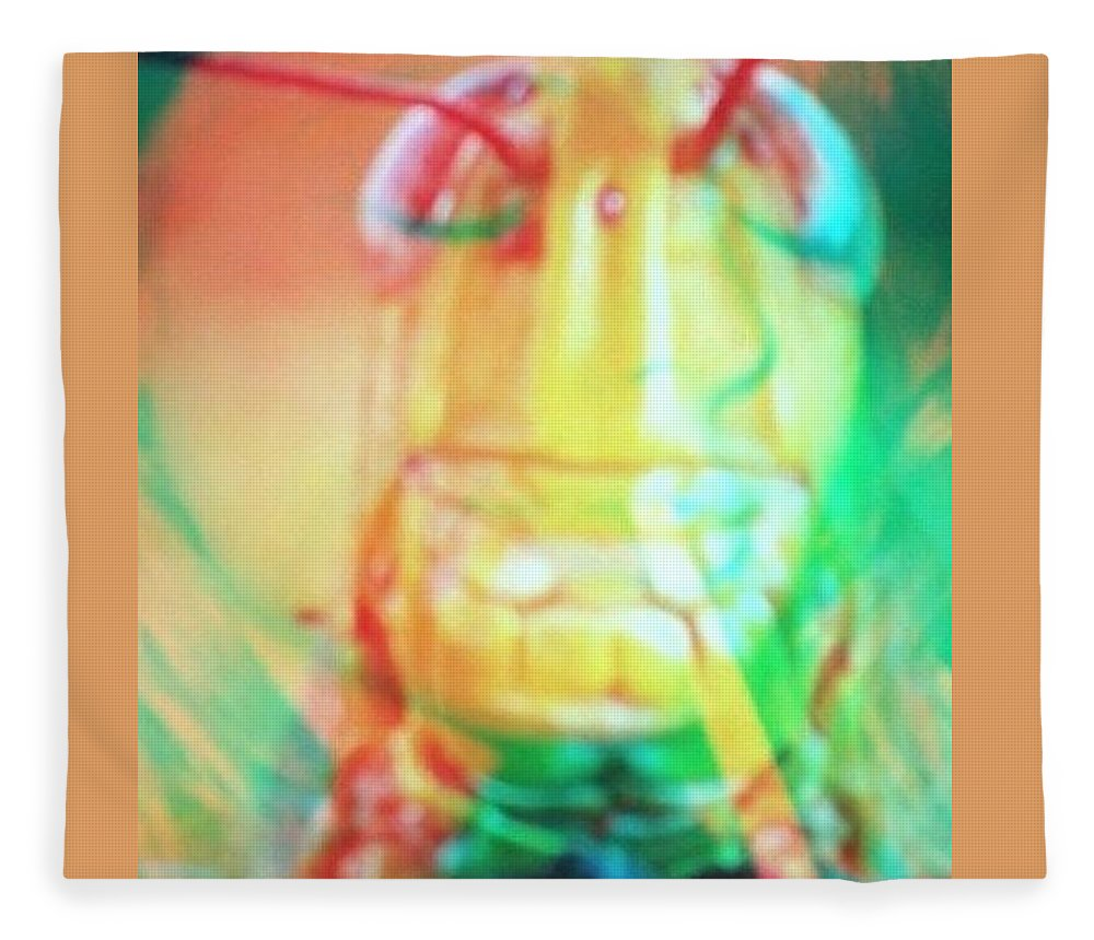 Photo Fleece Blanket featuring the photograph Grasshopper by Sean Kane