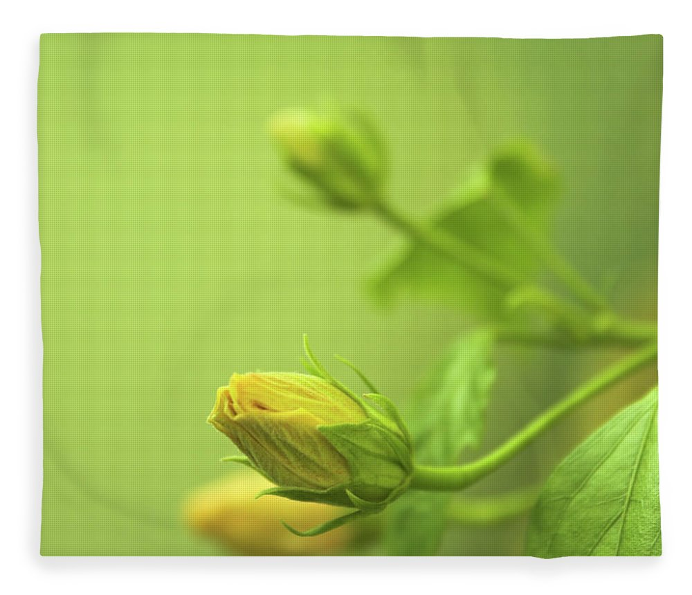 Moving Up Fleece Blanket featuring the photograph Green Delight In Surreal Light by Blue iq