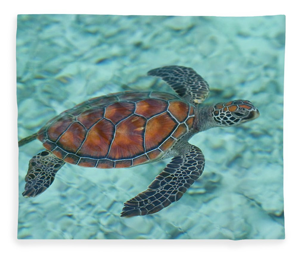 Underwater Fleece Blanket featuring the photograph Green Sea Turtle by Mako Photo