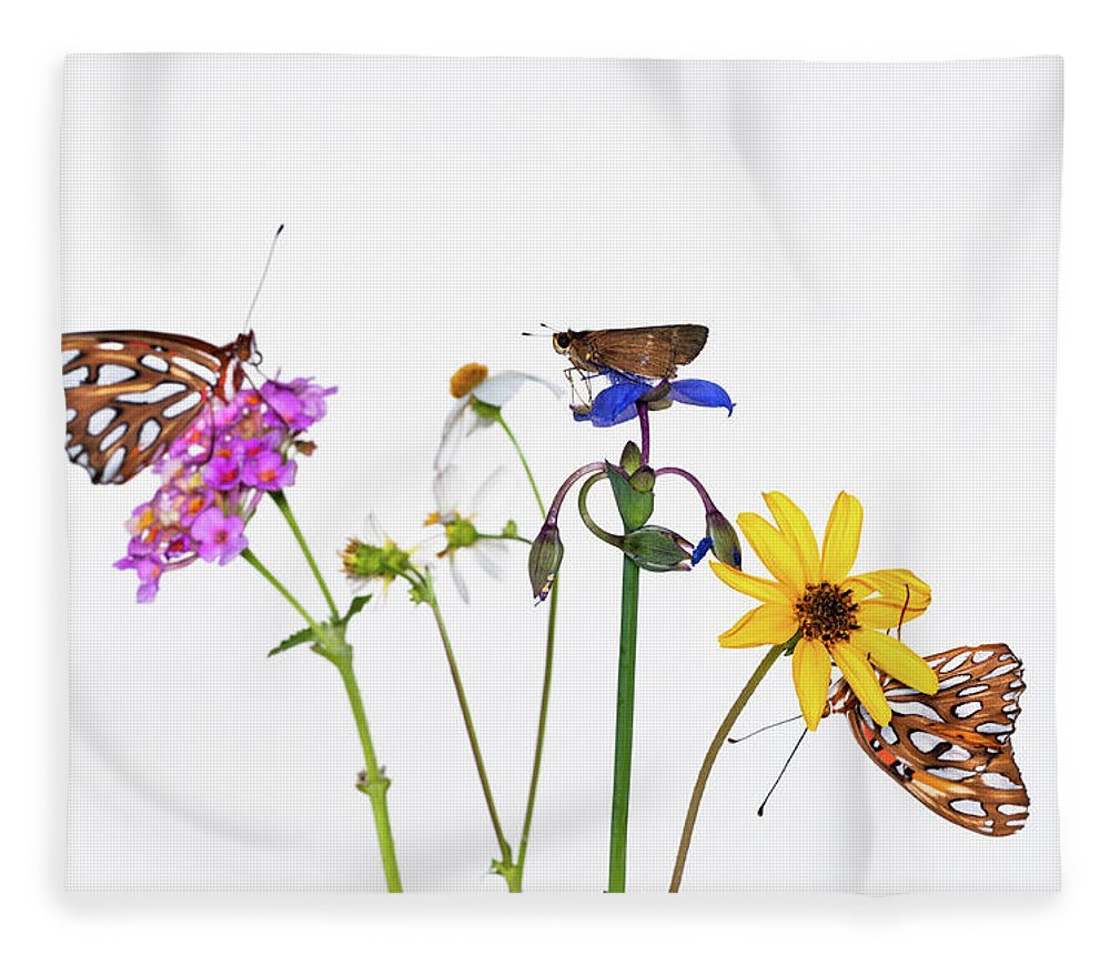 White Background Fleece Blanket featuring the photograph Gulf Fritillary And Brown Skipper by Jim Mckinley