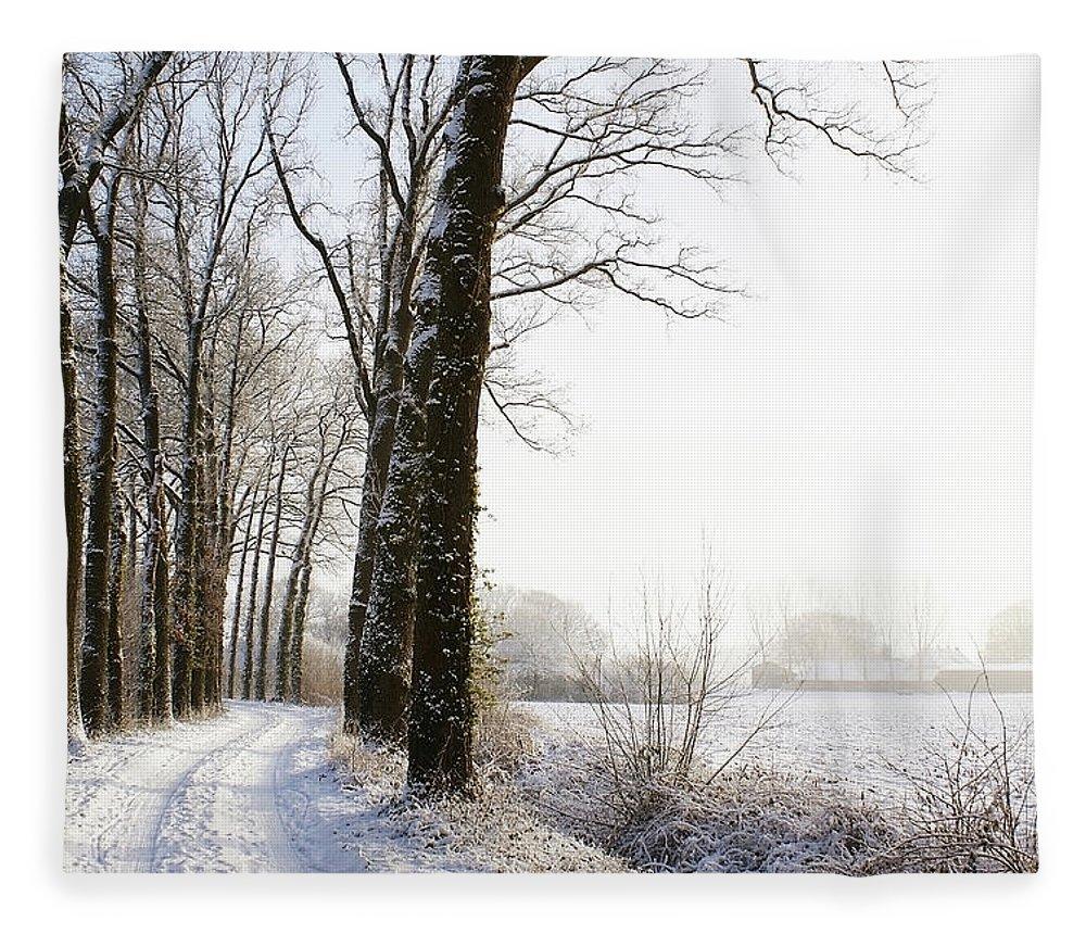 Tranquility Fleece Blanket featuring the photograph Half Black, Half White by Bob Van Den Berg Photography