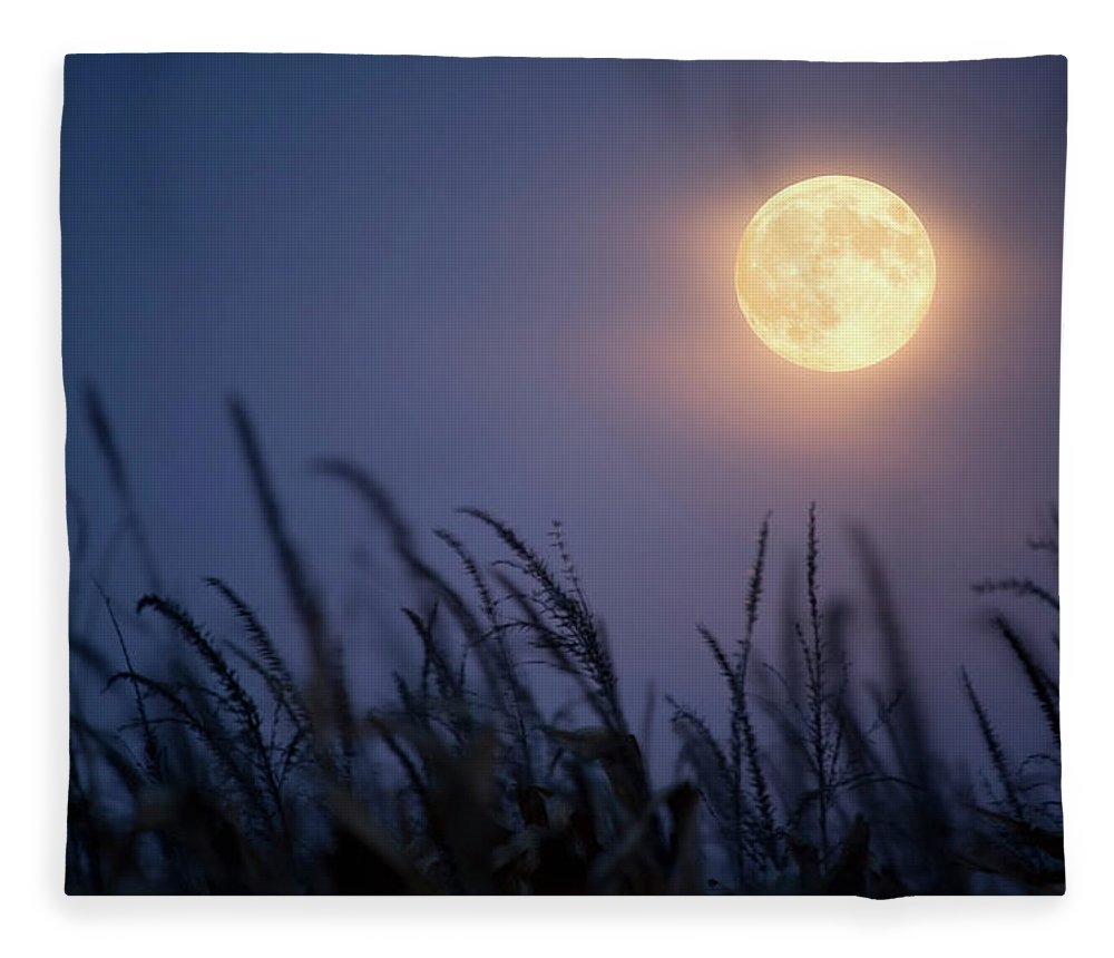 Sky Fleece Blanket featuring the photograph Harvest Moon by Jimkruger