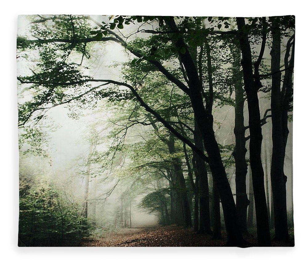 Scenics Fleece Blanket featuring the photograph Haunted Forest by Bob Van Den Berg Photography