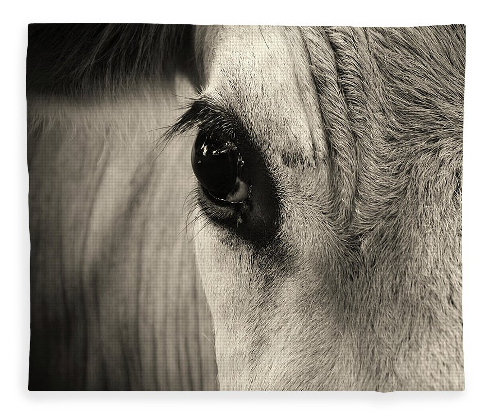 Horse Fleece Blanket featuring the photograph Horse Eye by Karena Goldfinch