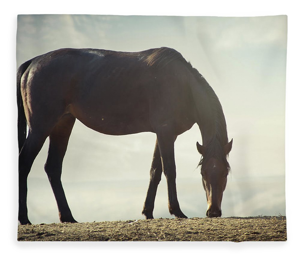 Horse Fleece Blanket featuring the photograph Horse In Wild by Arman Zhenikeyev - Professional Photographer From Kazakhstan
