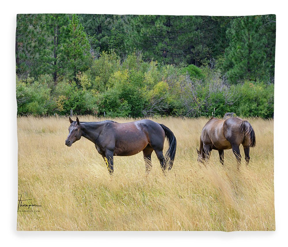Animals Fleece Blanket featuring the photograph Horses At Pasture by Jim Thompson