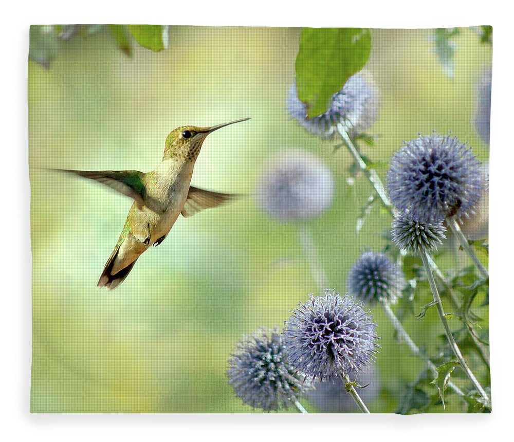 Animal Themes Fleece Blanket featuring the photograph Hovering Hummingbird by Nancy Rose