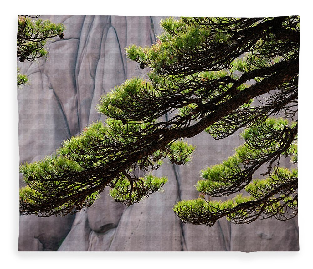 Chinese Culture Fleece Blanket featuring the photograph Huang Shan Landscape, China by Mint Images/ Art Wolfe