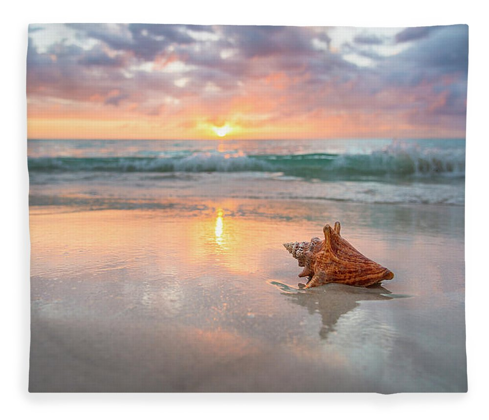 Nature Fleece Blanket featuring the photograph Jamaica, Conch Shell On Beach by Tetra Images