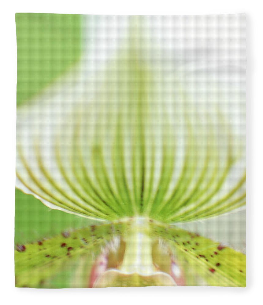 Single Flower Fleece Blanket featuring the photograph Ladys Slipper Paphiopedilum Sukhakulii by Vera Storman