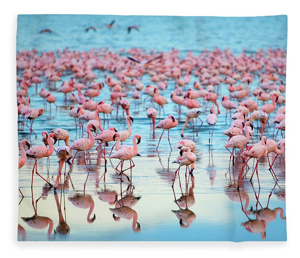 Tranquility Fleece Blanket featuring the photograph Lake Nakaru Flamingoes by Grant Faint