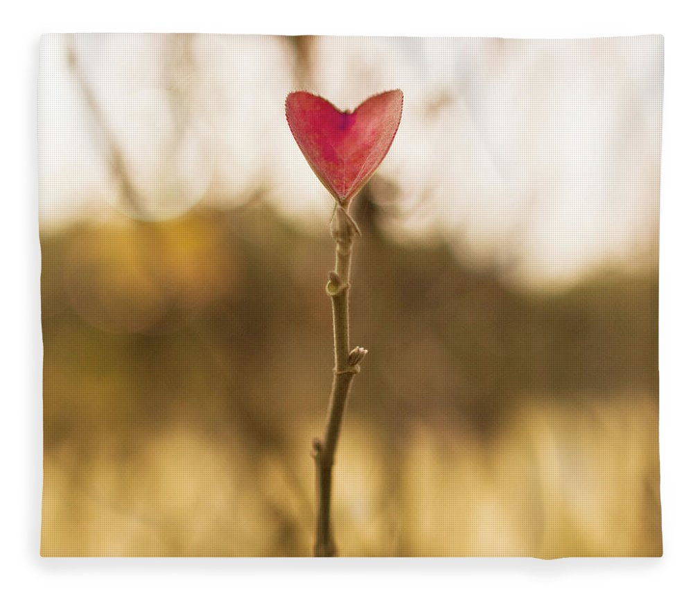 Outdoors Fleece Blanket featuring the photograph Leaf In Heart Shape by Twomeows