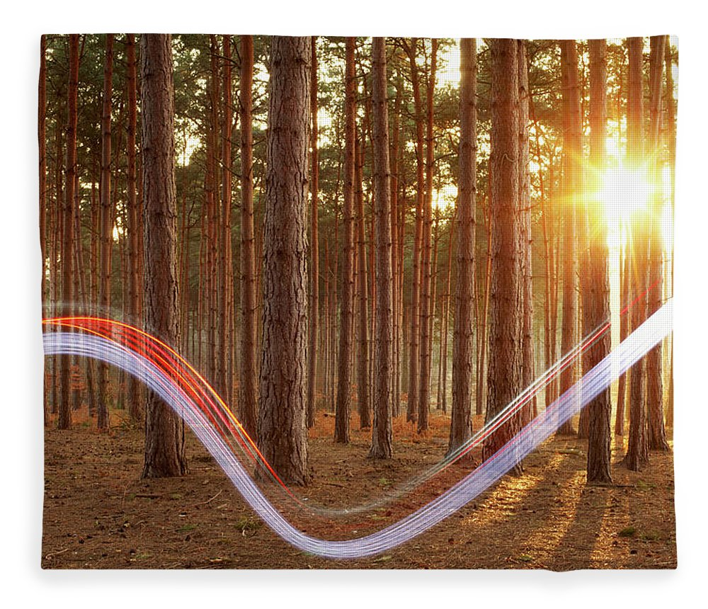 Environmental Conservation Fleece Blanket featuring the photograph Light Swoosh In Woods by Tim Robberts