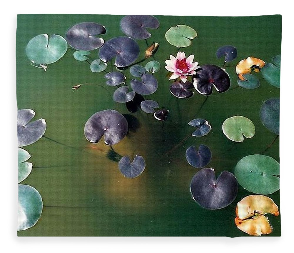 1980-1989 Fleece Blanket featuring the photograph Lillypad by Margherita Wohletz