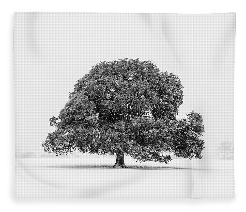 Scenics Fleece Blanket featuring the photograph Lone Holm Oak Tree In Snow, Somerset, Uk by Nick Cable