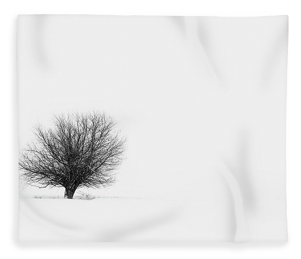 Tranquility Fleece Blanket featuring the photograph Lone Tree by Jrj-photo