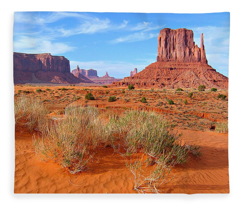 Tranquility Fleece Blanket featuring the photograph Monument Valley Landscape by Sandra Leidholdt