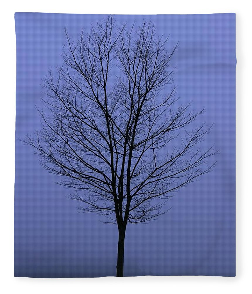 November Fleece Blanket featuring the photograph Moody Blue November Day by Zennie