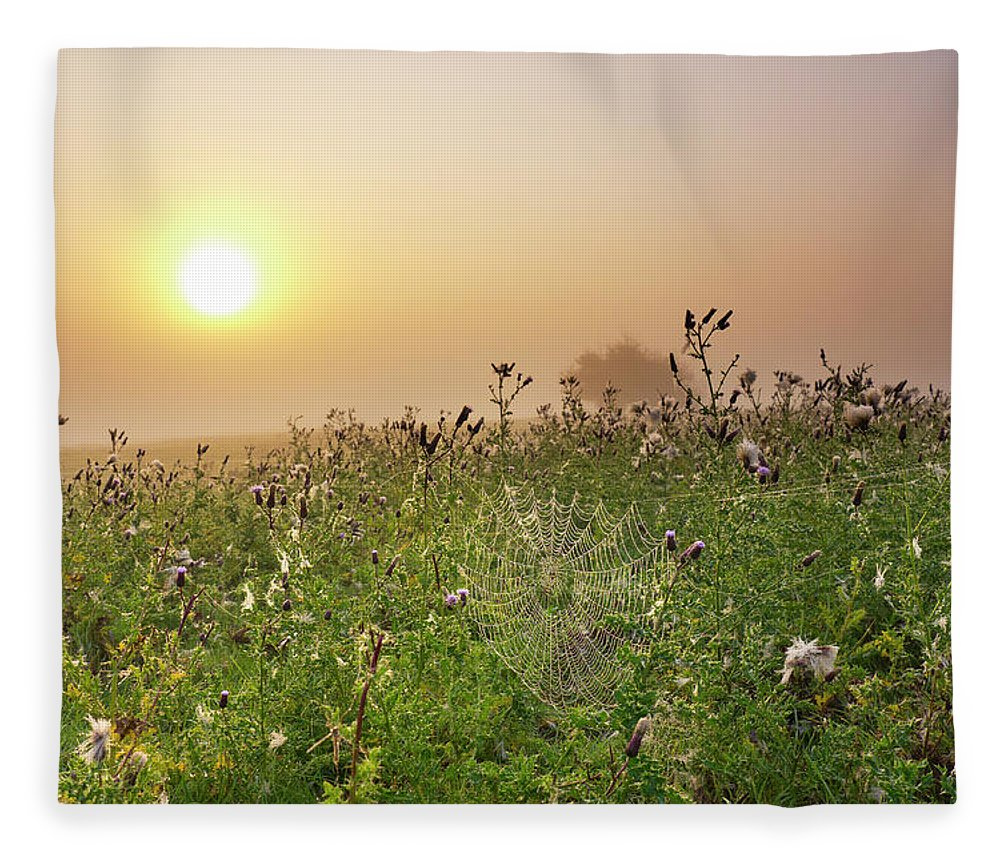 Grass Fleece Blanket featuring the photograph Morning Dew On Spiders Cobweb by Travelpix Ltd