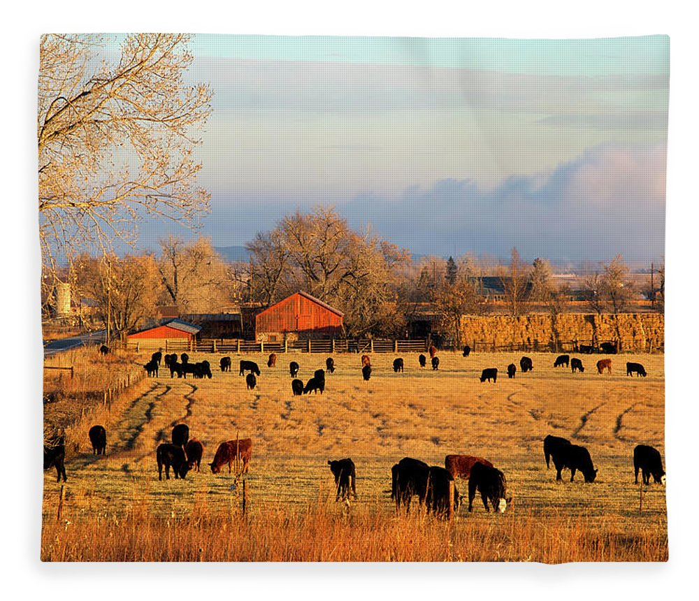 Scenics Fleece Blanket featuring the photograph Morning Farm Scene by Beklaus