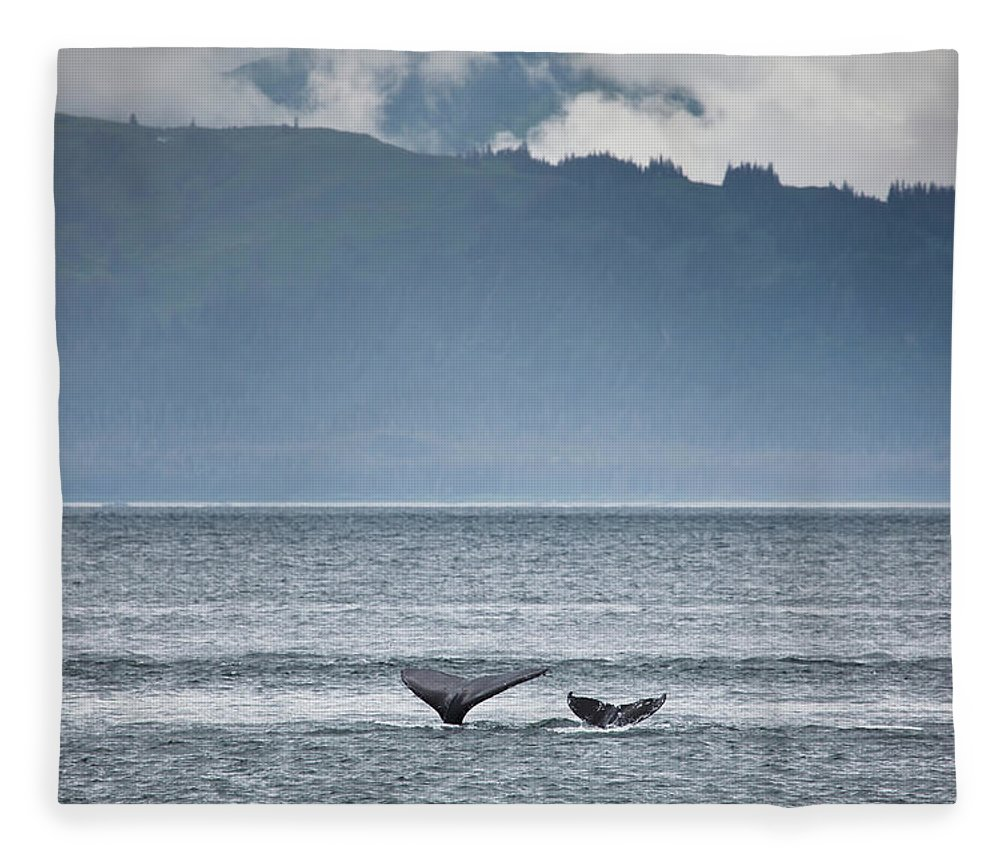 Water's Edge Fleece Blanket featuring the photograph Mother And Calf Whale Tails Megaptera by Blake Kent / Design Pics
