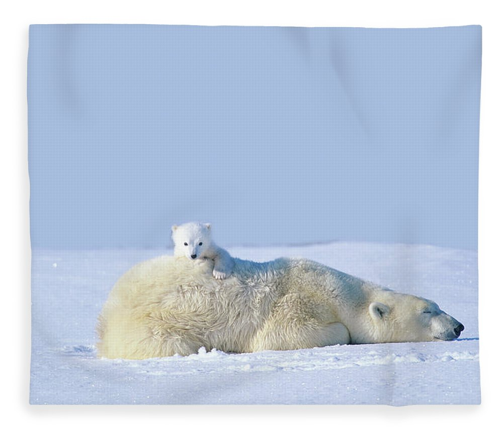 Bear Cub Fleece Blanket featuring the photograph Mother Polar Bear With Cub, Lying On by Art Wolfe