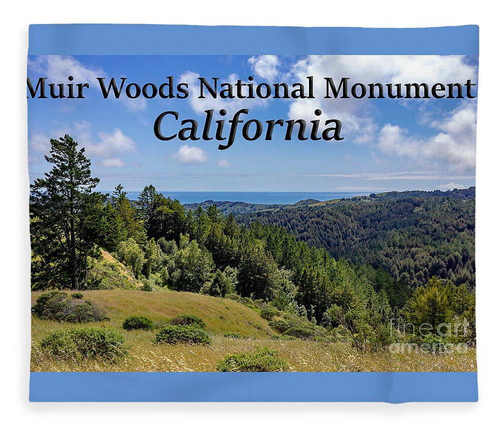 Muir Woods National Monument Fleece Blanket featuring the photograph Muir Woods National Monument California by G Matthew Laughton