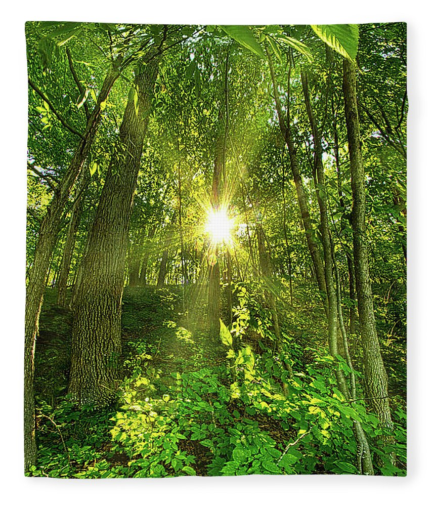 Life Fleece Blanket featuring the photograph My Secret Place by Phil Koch